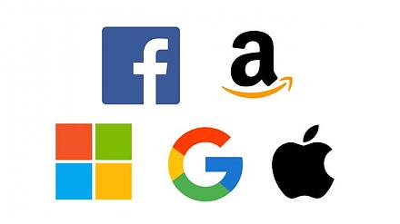 Apple, Alphabet, Microsoft, Amazon, and Facebook have become the most valuable public companies in the world.